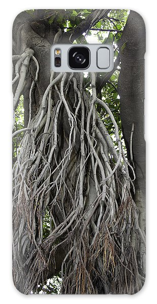 Roots From A Large Tree Inside Jallianwala Bagh Galaxy Case by Ashish Agarwal