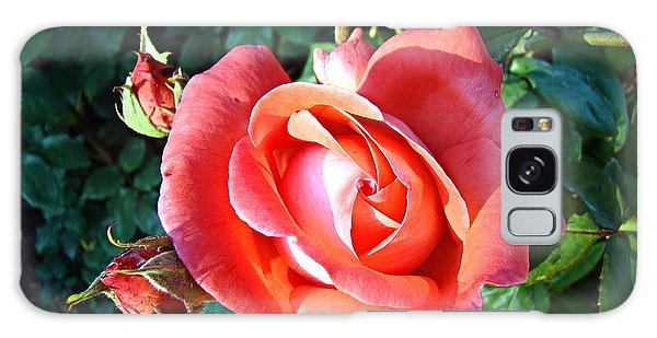Rose In Setting Sun Galaxy Case by Nick Kloepping