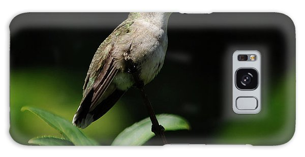 Ruby-throated Hummingbird Female Galaxy Case