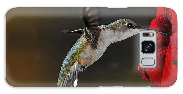 Ruby Throated Hummingbird Galaxy Case by Mike Martin