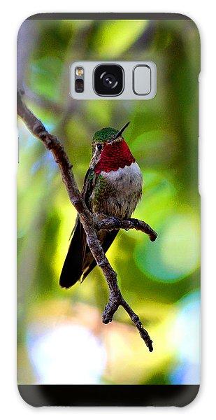 Ruby Throated Hummingbird Galaxy Case by Susanne Still