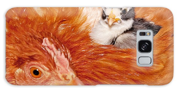 Safety Of Mama Hen Galaxy Case