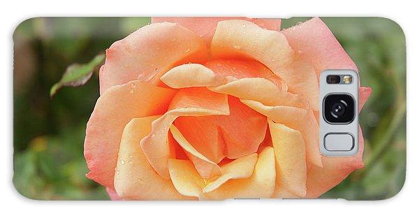 Salmon Rose Galaxy Case