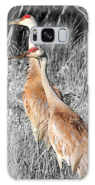 Sandhill Cranes In Select Color Galaxy Case