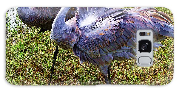 Sandhill Cranes-plumes In Bloom Galaxy Case