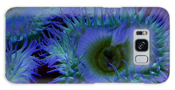 Sea Anemone Galaxy Case