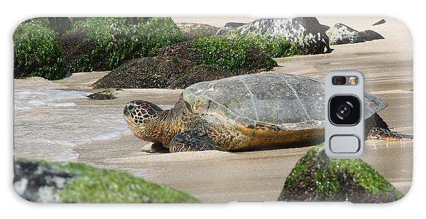 Sea Turtle 1 Galaxy Case