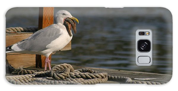 Seagull Swallows Starfish Galaxy Case by Kym Backland