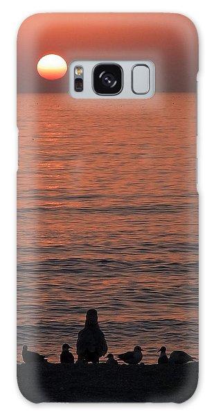 Seagulls Watching Sunset Galaxy Case