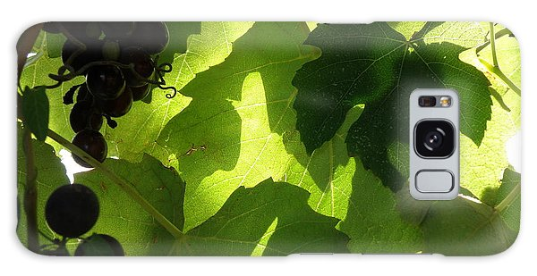 Shadow Dancing Grapes Galaxy Case by Lainie Wrightson
