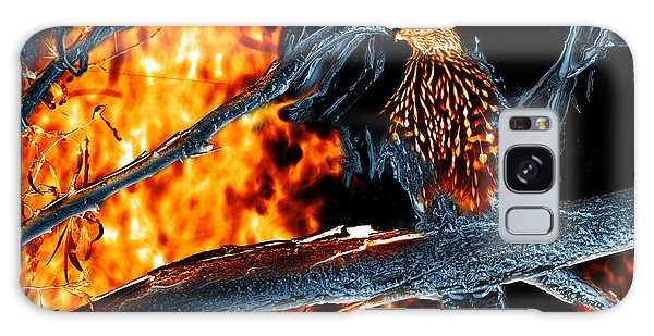 Sharp Shinned Hawk 0112 Fire And Ice Art Galaxy Case by James Ahn