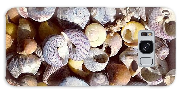 Shells From Brittany Galaxy Case by Nic Squirrell