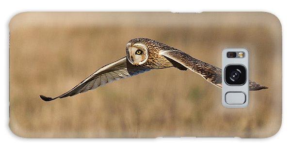 Short Eared Owl Hunting Galaxy Case