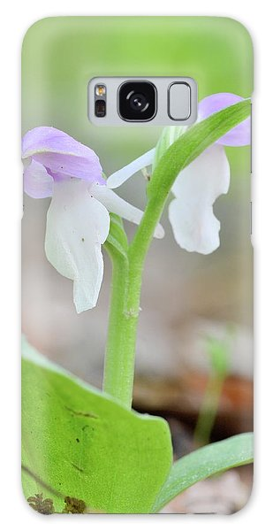 Showy Orchis Galaxy Case