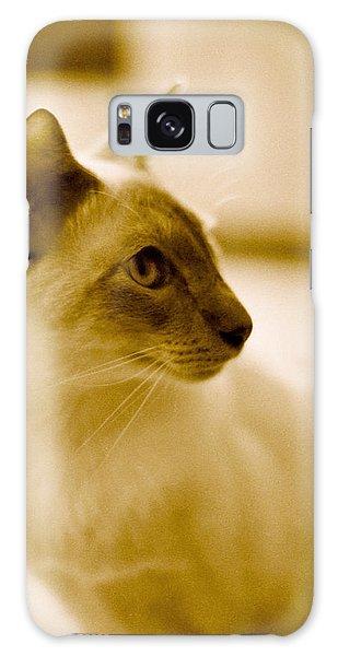 Siamese Feline Galaxy Case