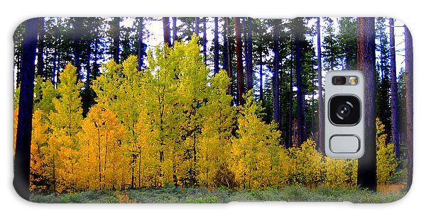 Sierra Forest Galaxy Case