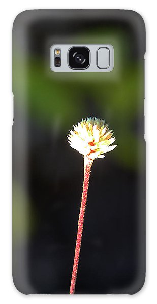 Simplicity Galaxy Case by Kerri Ligatich