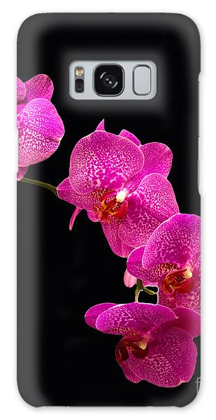 Simply Beautiful Purple Orchids Galaxy Case