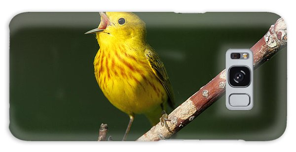 Singing Yellow Warbler Galaxy Case