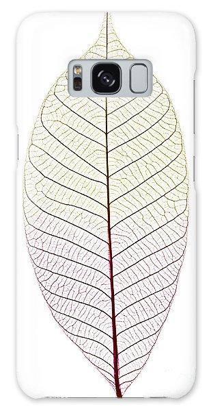 Tint Galaxy Case - Skeleton Leaf by Elena Elisseeva