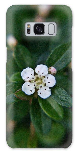 Crossville Galaxy S8 Case - Skull Ghost Flower 1 by Douglas Barnett