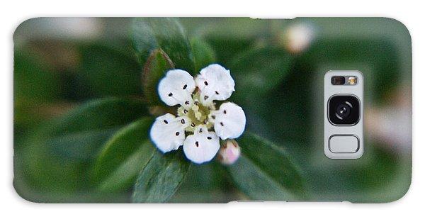 Crossville Galaxy S8 Case - Skull Ghost Flower 2 by Douglas Barnett