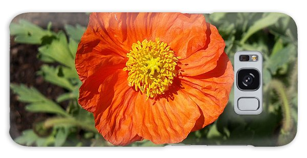 Small Orange Poppy Galaxy Case