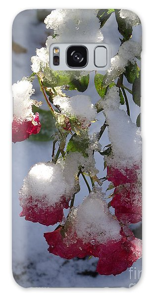 Snow Covered Roses Galaxy Case