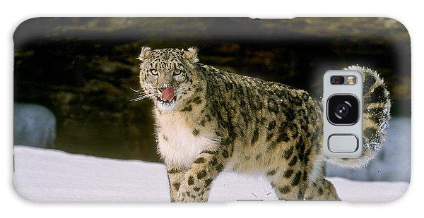 Snow Leopard 2 Galaxy Case