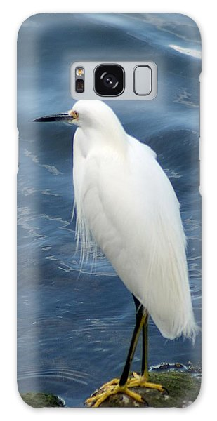 Snowy Egret 1 Galaxy Case by Joe Faherty