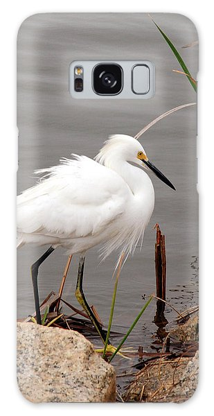 Snowy Egret Galaxy Case by Kay Lovingood