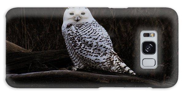Snowy Owl Two Galaxy Case
