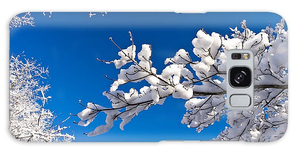 Snowy Trees And Blue Sky Galaxy Case