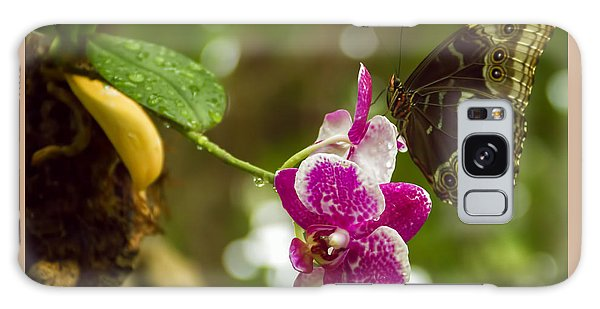 Soaring Orchid Galaxy Case