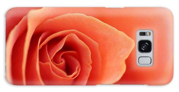 Soft Rose Petals Galaxy Case
