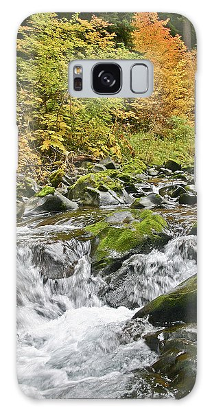 Sol Duc Fall Galaxy Case
