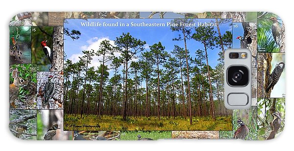 Southeastern Pine Forest Wildlife Poster Galaxy Case