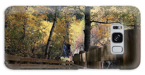 Spearfish Canyon Walkway Galaxy Case