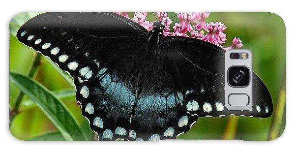 Spicebush Swallowtail Din038 Galaxy Case by Gerry Gantt