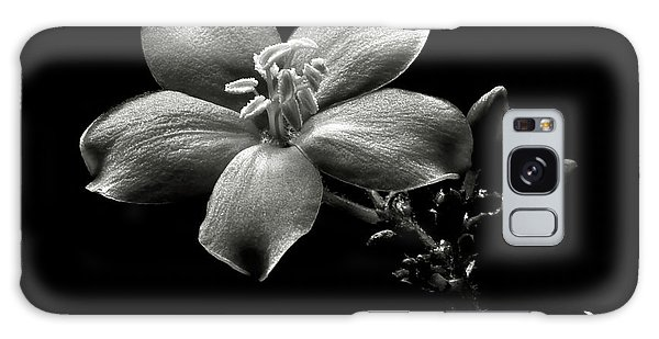 Spicy Jatropha In Black And White Galaxy Case