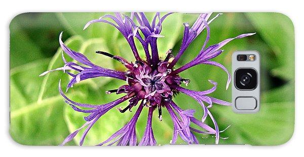 Spider Flower Galaxy Case by Nick Kloepping