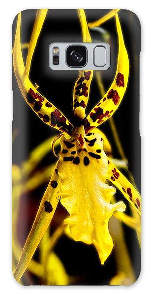 Spider Orchid Galaxy Case by Barbara Middleton