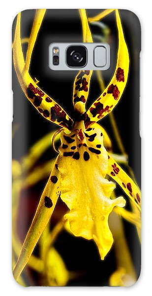 Spider Orchid Galaxy Case