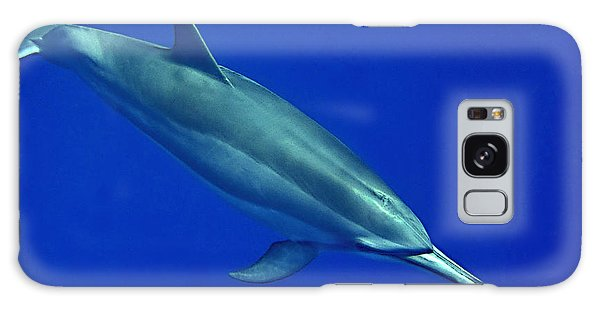 Spinner Dolphin Up Close Galaxy Case
