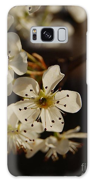 Spring Blossoms I Galaxy Case
