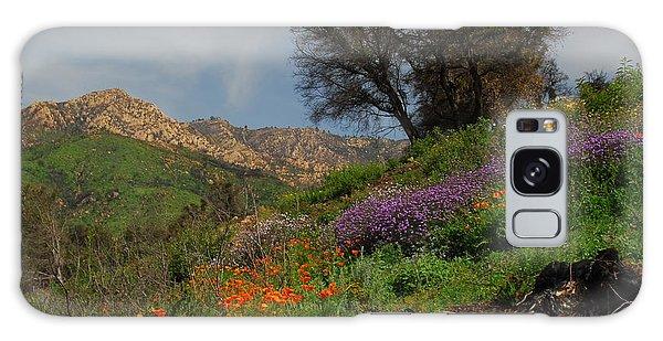 Spring In Santa Barbara Galaxy Case by Lynn Bauer