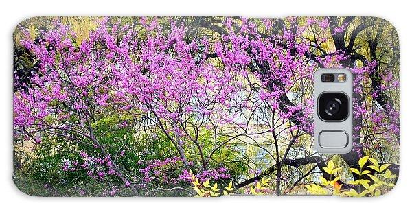 Spring Trees In San Antonio Galaxy Case