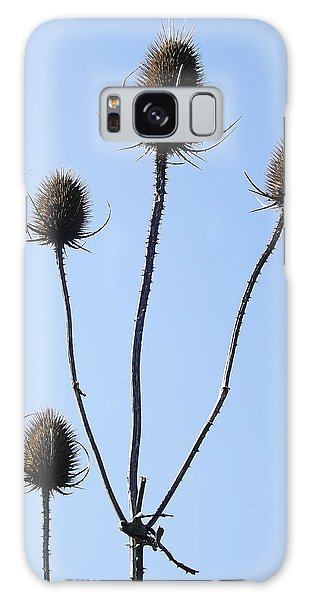 Spring Weeds 1 Galaxy Case by Gerald Strine