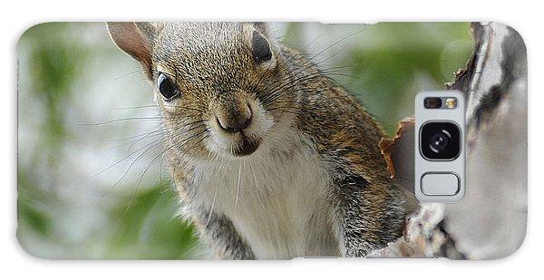 Squirrel 2 Galaxy Case