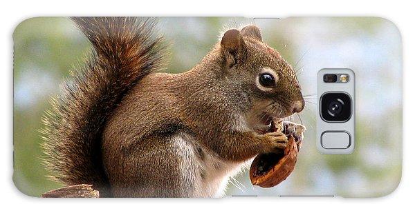 Squirrel And His Walnut Galaxy Case